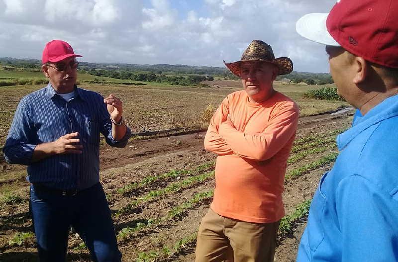 Recorre ministro de la Agricultura áreas tabacaleras y de cultivos varios en Sancti Spíritus