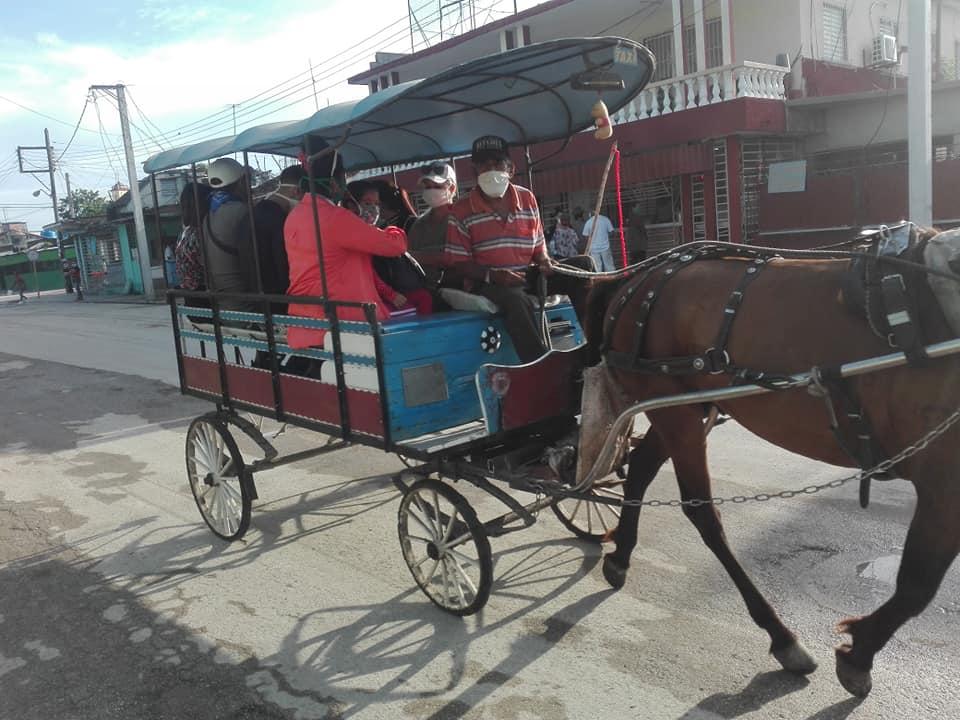 2 foto transporte 1