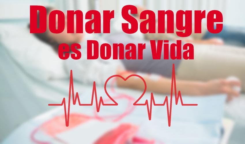foto donante 1
