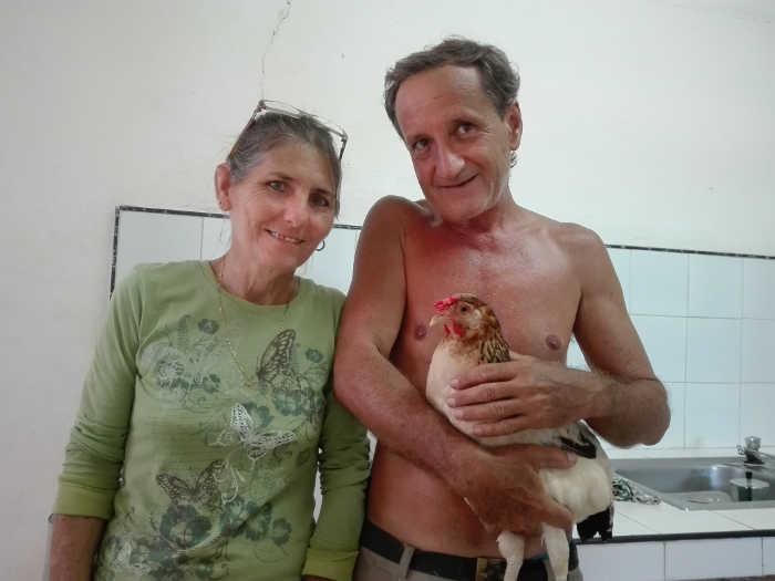 2 gallina cabaiguan