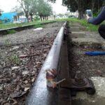 Caracol Gigante africano viaja por ferrocarril en Cabaiguán (+ Fotos)
