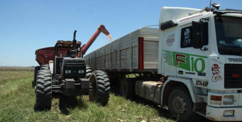 7469 bolivia agropecuario